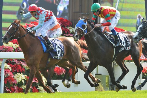 Ed Dunlop News Group 1 Win In Hong Kong For Red Cadeaux